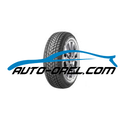 Шина GT Radial WINTER PRO 2 175 65 R14 82T, 100A3170